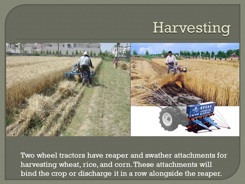 Two wheel tractors have reaper and swather attachments for harvesting wheat, rice, and corn.