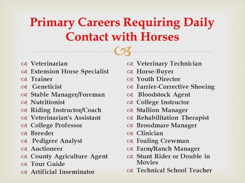  Primary Careers Requiring Daily Contact with Horses  Veterinarian  Extension Horse Specialist  Trainer  Geneticist  Stable Manager/Foreman  Nutritionist  Riding Instructor/Coach  Veterinarian s Assistant  College Professor  Breeder  Pedigree Analyst  Auctioneer  County Agriculture Agent  Tour Guide  Artificial Inseminator  Veterinary Technician  Horse-Buyer  Youth Director  Farrier-Corrective Shoeing  Bloodstock Agent  College Instructor  Stallion Manager  Rehabilitation Therapist  Broodmare Manager  Clinician  Foaling Crewman  Farm/Ranch Manager  Stunt Rider or Double in Movies  Technical School Teacher