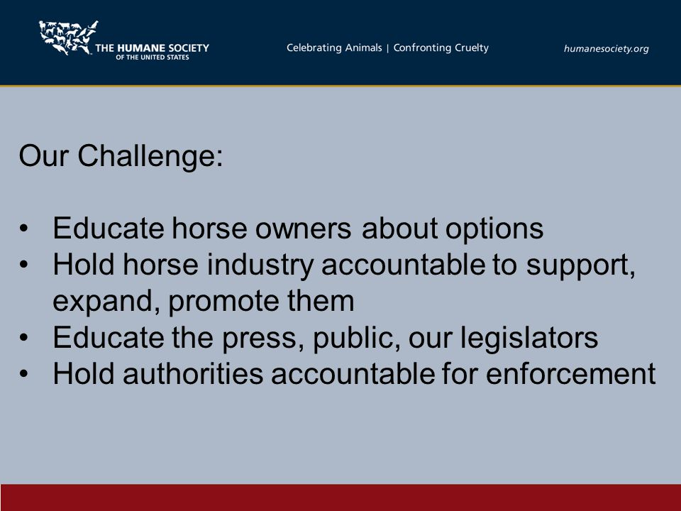 Our Challenge: Educate horse owners about options Hold horse industry accountable to support, expand, promote them Educate the press, public, our legislators Hold authorities accountable for enforcement