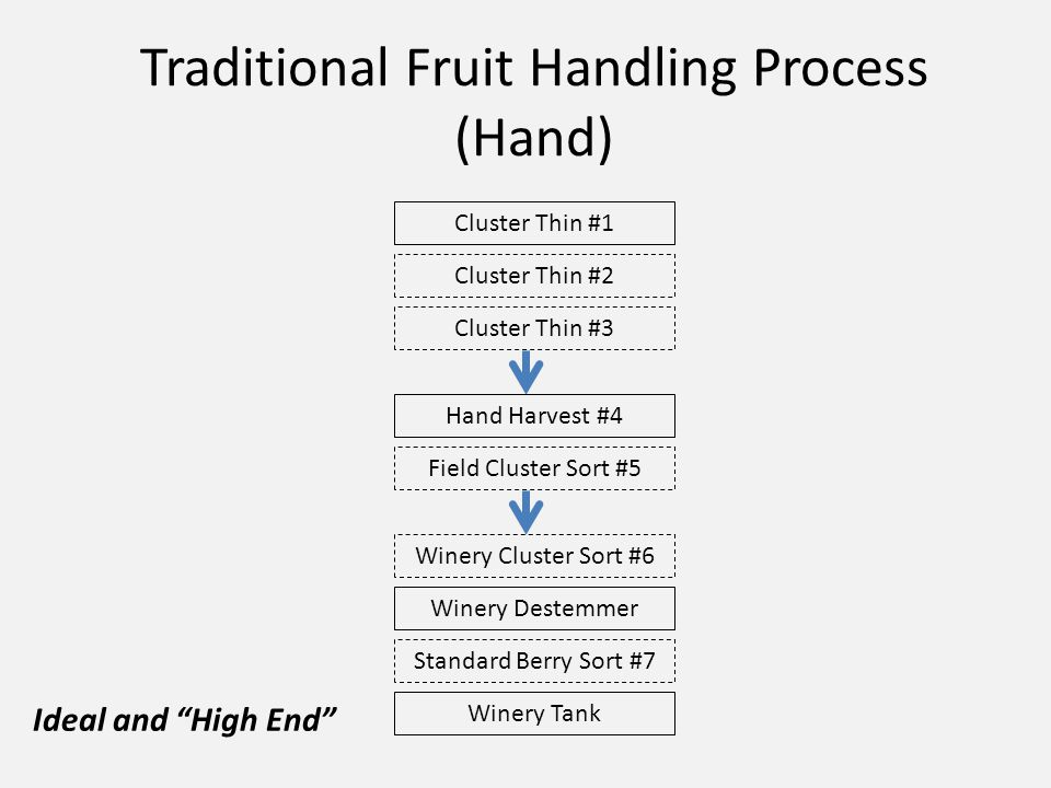 Traditional Fruit Handling Process (Hand) Cluster Thin #1 Cluster Thin #2 Cluster Thin #3 Hand Harvest #4 Field Cluster Sort #5 Winery Cluster Sort #6