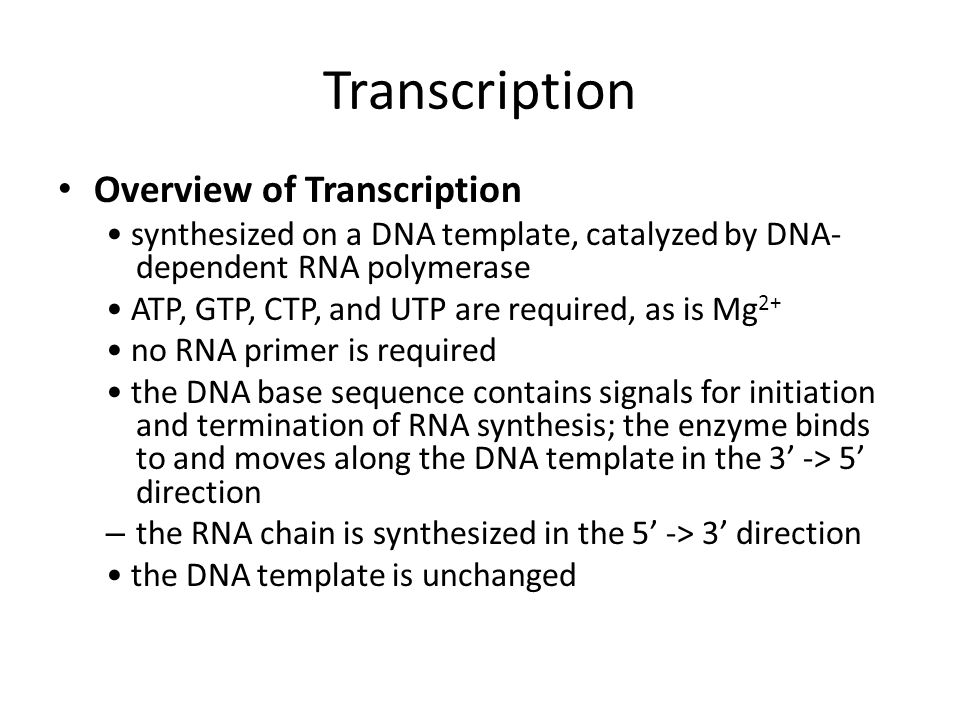 Transcription Overview of Transcription synthesized on a DNA template, catalyzed by DNA- dependent RNA polymerase ATP, GTP, CTP, and UTP are required,