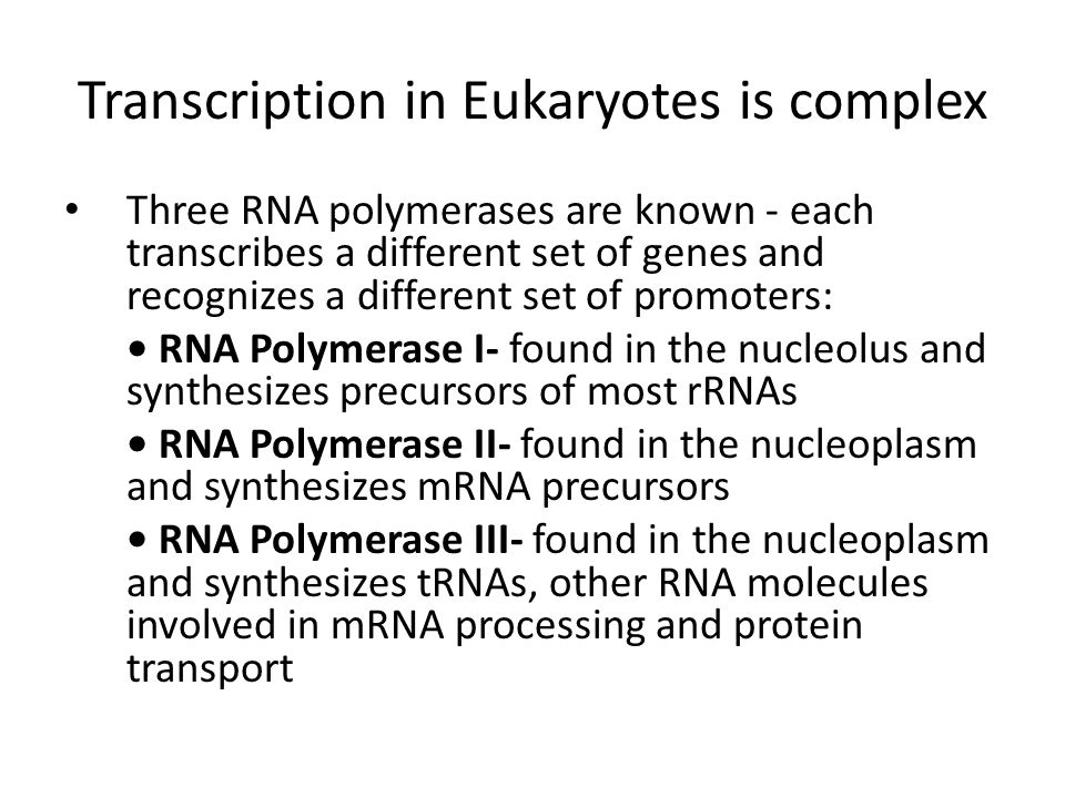 Transcription in Eukaryotes is complex Three RNA polymerases are known - each transcribes a different set of genes and recognizes a different set of p