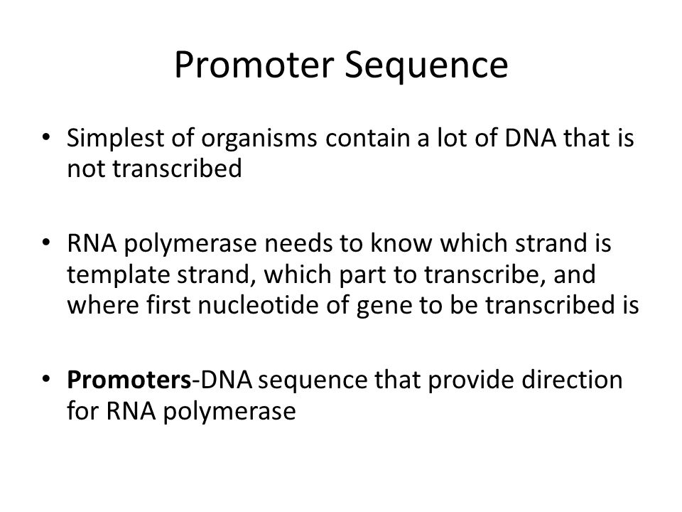 Promoter Sequence Simplest of organisms contain a lot of DNA that is not transcribed RNA polymerase needs to know which strand is template strand, whi