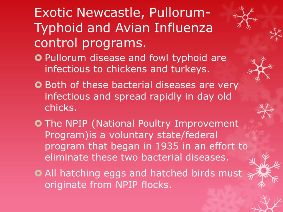 Exotic Newcastle, Pullorum- Typhoid and Avian Influenza control programs.
