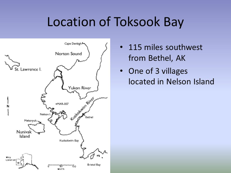 Location of Toksook Bay 115 miles southwest from Bethel, AK One of 3 villages located in Nelson Island