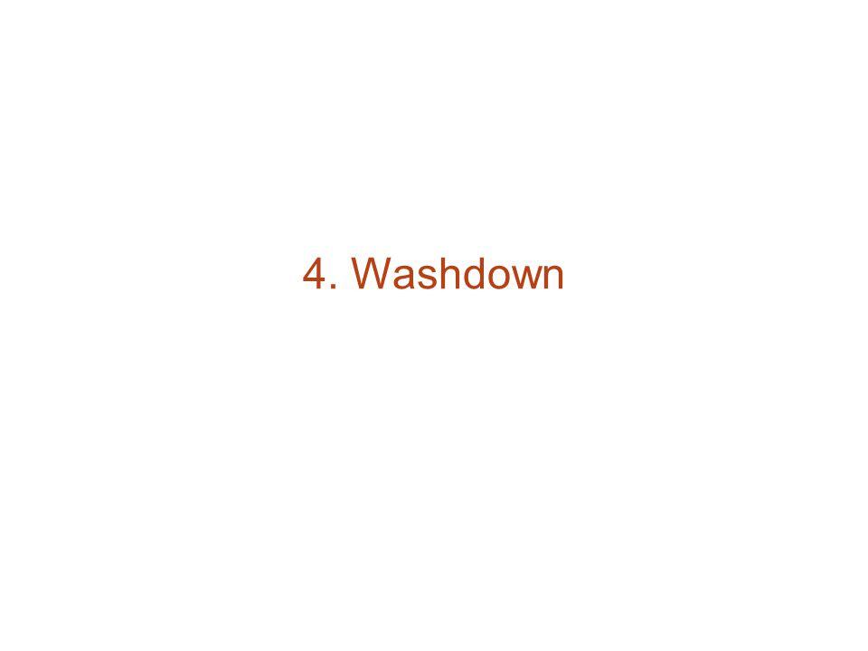 4. Washdown