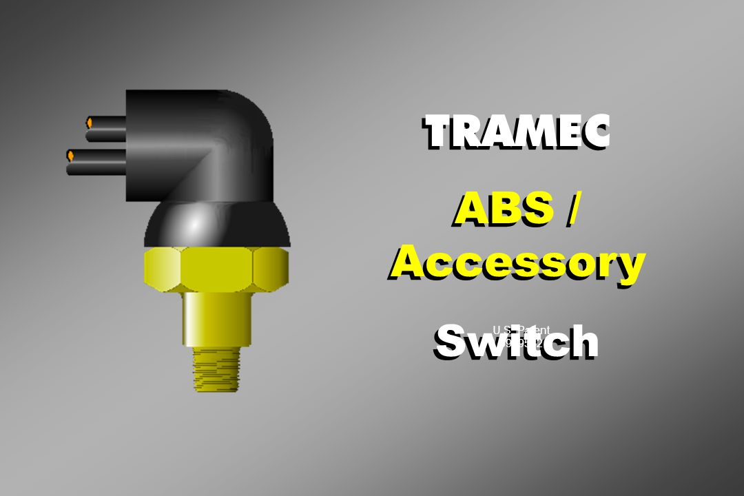 TRAMEC ABS / Accessory Switch TRAMEC ABS / Accessory Switch U.S. Patent 5929532