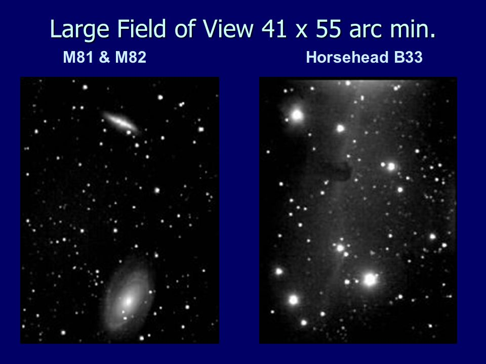 M81 & M82Horsehead B33 Large Field of View 41 x 55 arc min.
