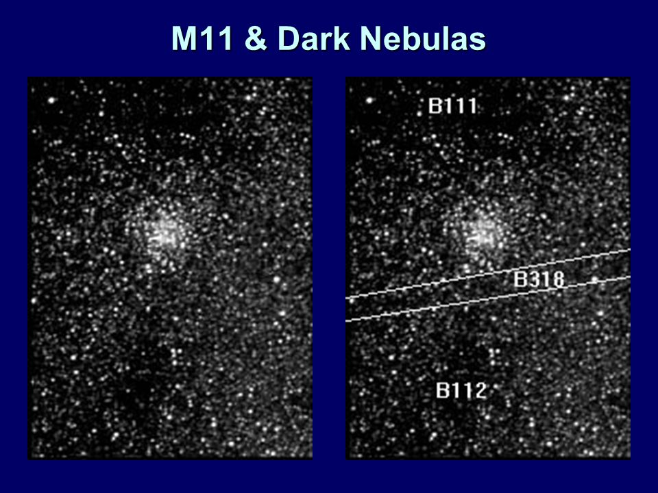 M11 & Dark Nebulas