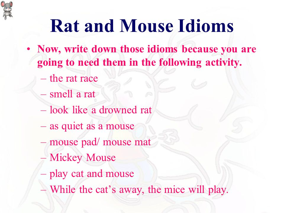 Rat and Mouse Idioms Do you understand the meaning of those idioms? –the rat race –smell a rat –look like a drowned rat –as quiet as a mouse –Mickey M