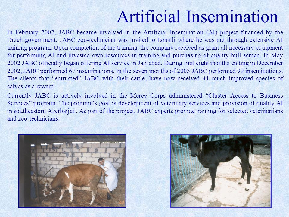 Artificial Insemination In February 2002, JABC became involved in the Artificial Insemination (AI) project financed by the Dutch government.