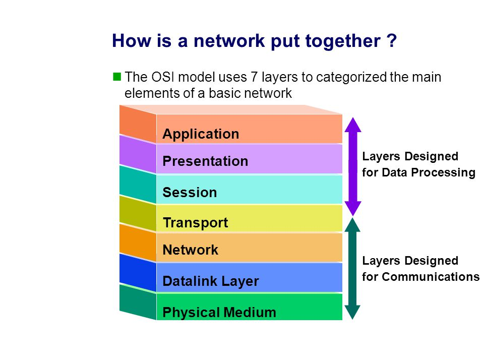 Physical Medium Network Transport Session Presentation Application Datalink Layer Layers Designed for Data Processing Layers Designed for Communications How is a network put together .