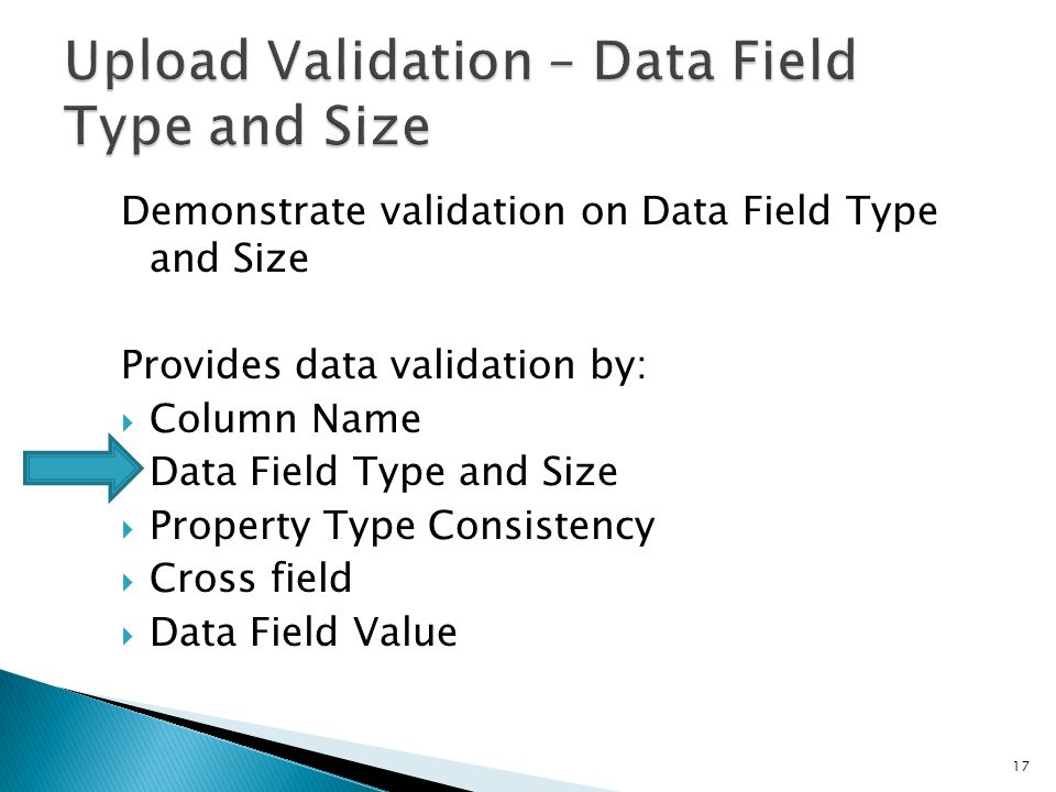 Demonstrate validation on Data Field Type and Size Provides data validation by:  Column Name  Data Field Type and Size  Property Type Consistency 