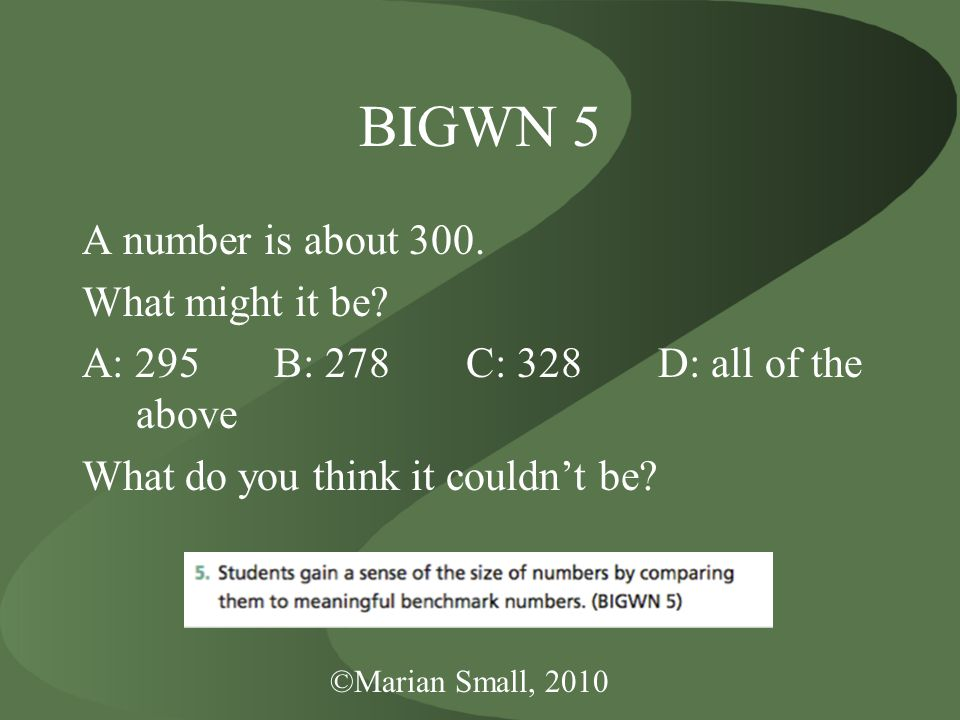 ©Marian Small, 2010 BIGWN 5 A number is about 300.