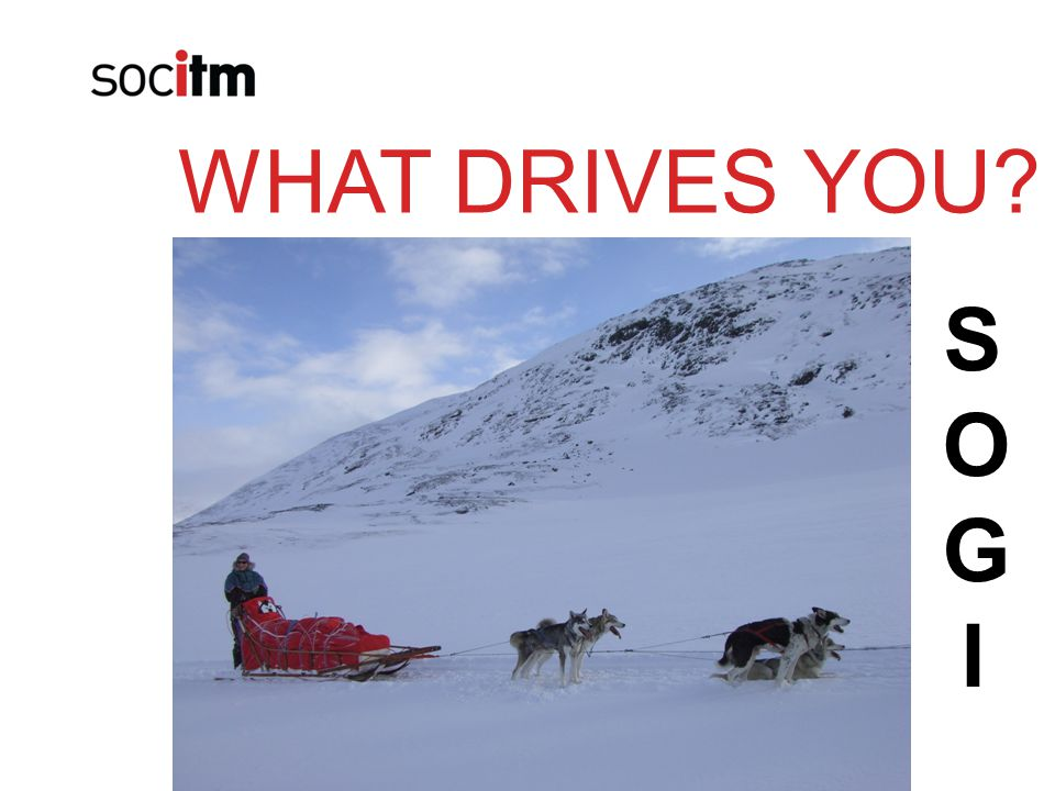 WHAT DRIVES YOU? SOGISOGI