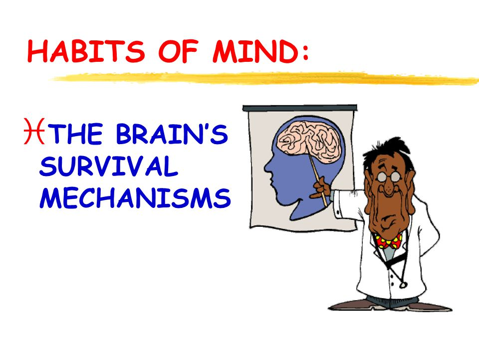  To create awareness of the habits of mind through workshops, seminars, publications and the internet.