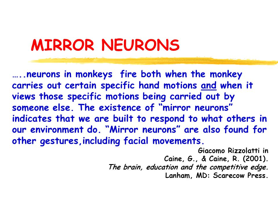 MIRROR NEURONS …..neurons in monkeys fire both when the monkey carries out certain specific hand motions and when it views those specific motions being carried out by someone else.