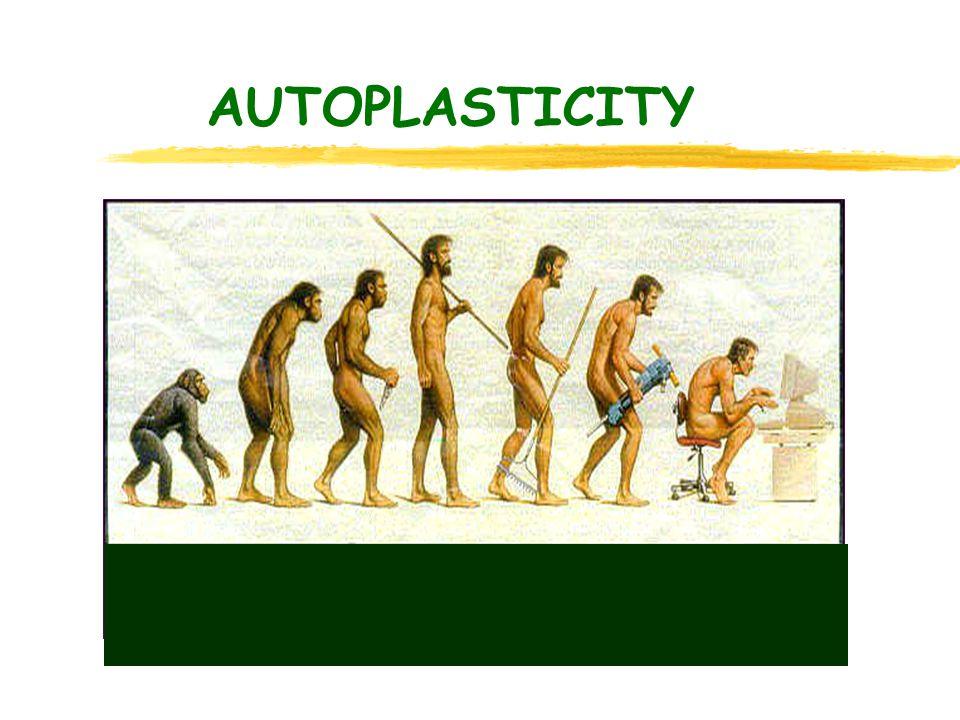 AUTOPLASTICITY