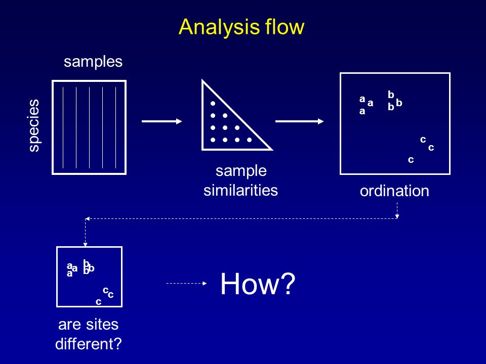 Analysis flow samples species sample similarities a a a b b b c c c ordination a a a b b b c c c are sites different.