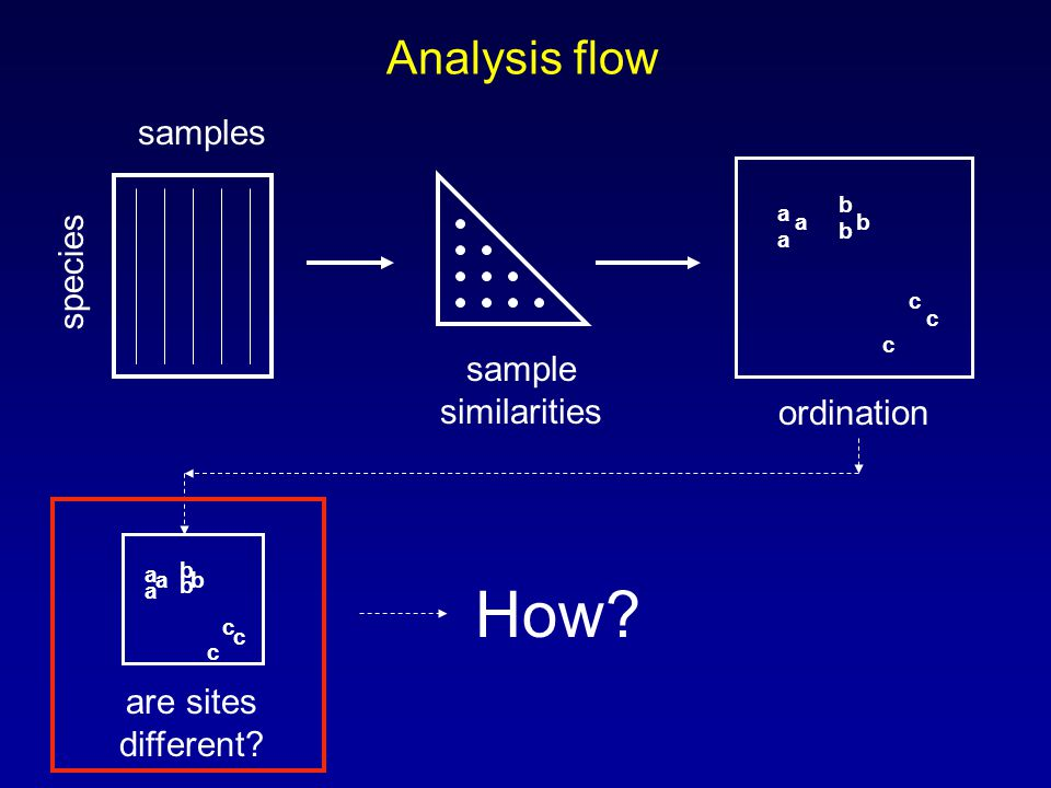Analysis flow samples species sample similarities a a a b b b c c c ordination a a a b b b c c c are sites different? How?