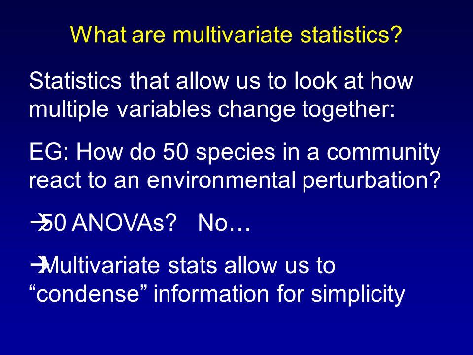 What are multivariate statistics.