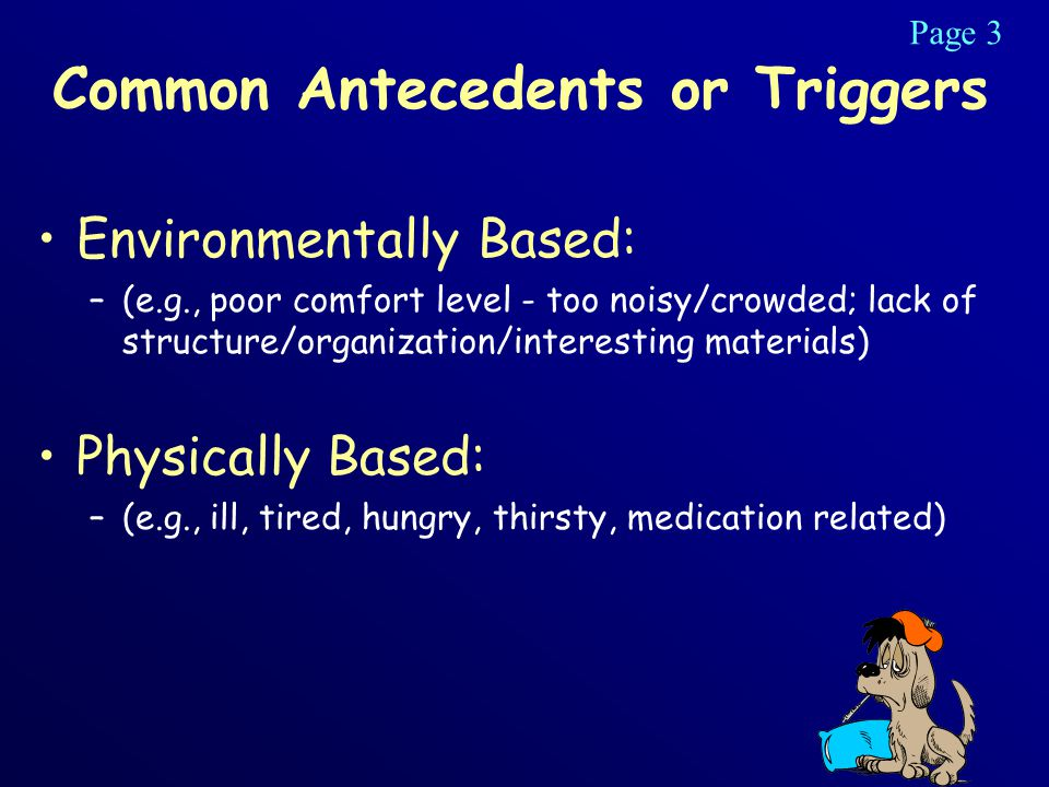 Common Antecedents or Triggers Environmentally Based: –(e.g., poor comfort level - too noisy/crowded; lack of structure/organization/interesting materials) Physically Based: –(e.g., ill, tired, hungry, thirsty, medication related) Page 3