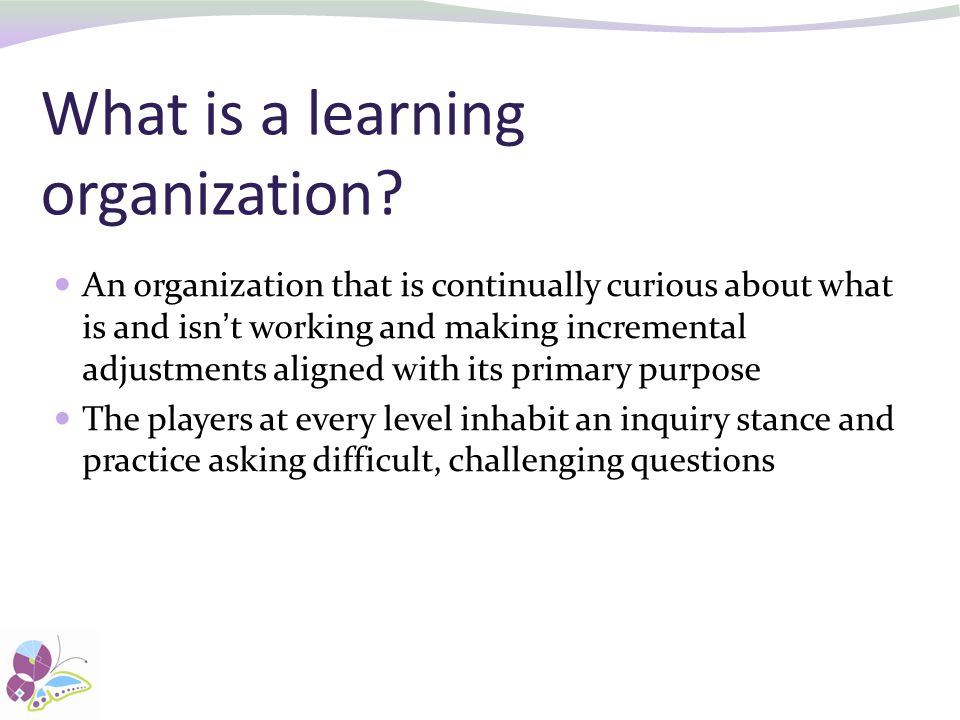 What is a learning organization.