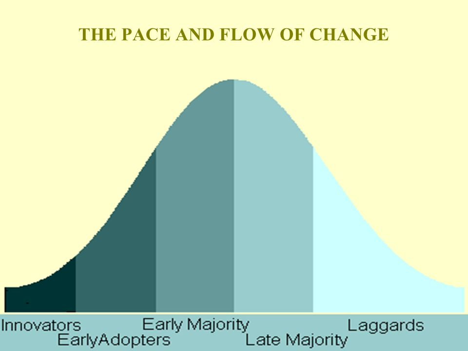 12 THE PACE AND FLOW OF CHANGE
