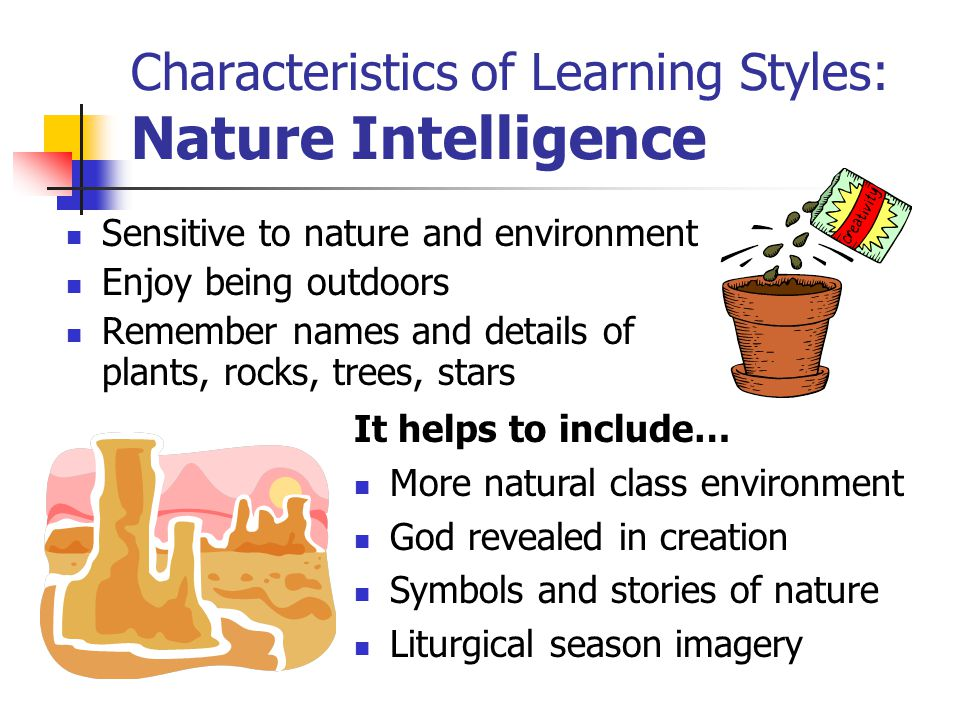 Characteristics of Learning Styles: Nature Intelligence Sensitive to nature and environment Enjoy being outdoors Remember names and details of plants, rocks, trees, stars It helps to include… More natural class environment God revealed in creation Symbols and stories of nature Liturgical season imagery