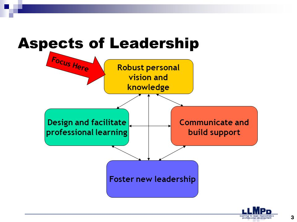 3 Aspects of Leadership Robust personal vision and knowledge Design and facilitate professional learning Communicate and build support Foster new leadership Focus Here