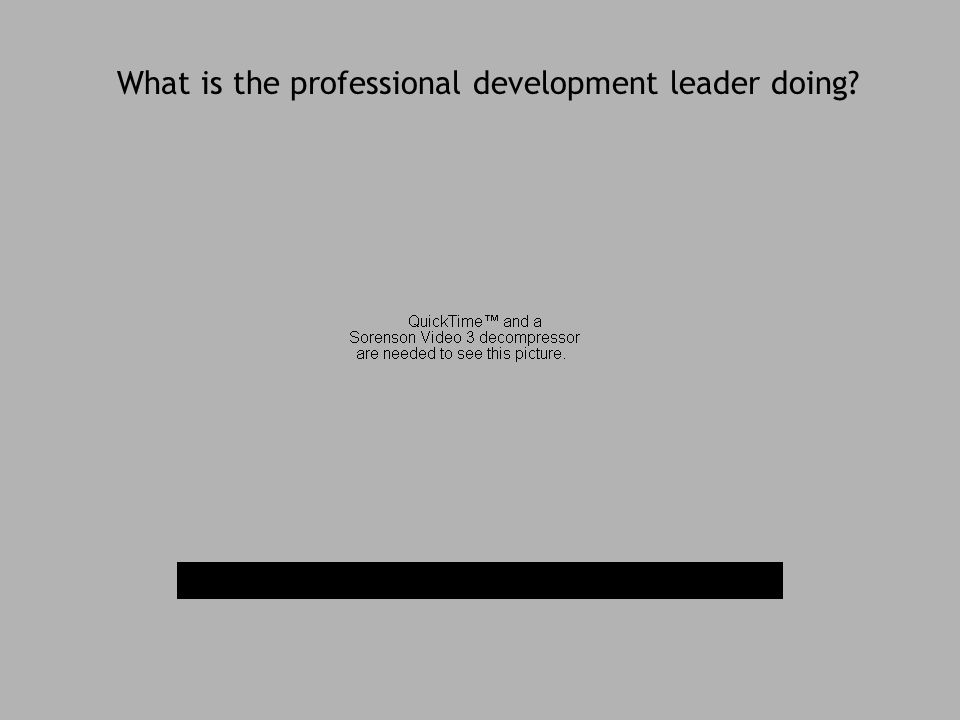 What is the professional development leader doing