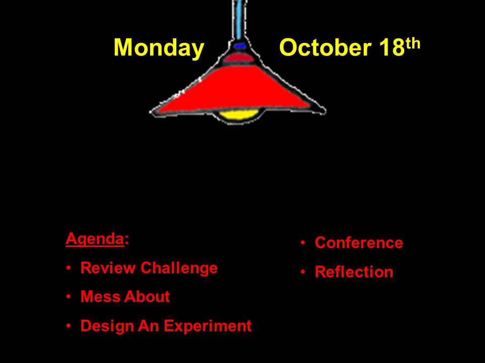 Reflections Observation Sheet Summary Single Flippers Whirligigs in notebook Clean Up