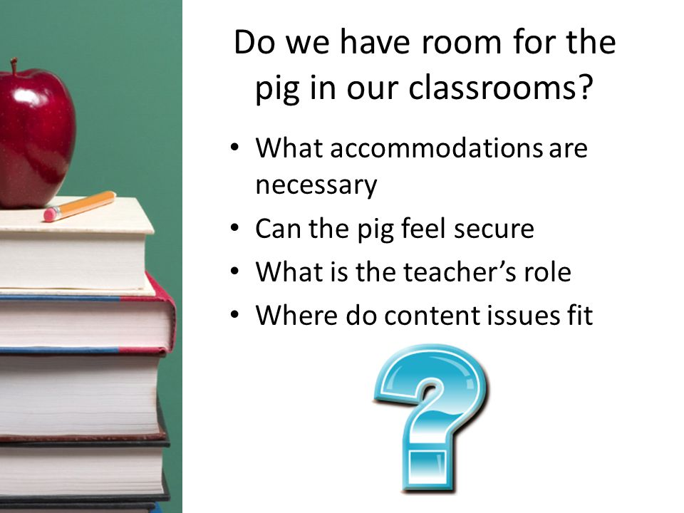 Do we have room for the pig in our classrooms.