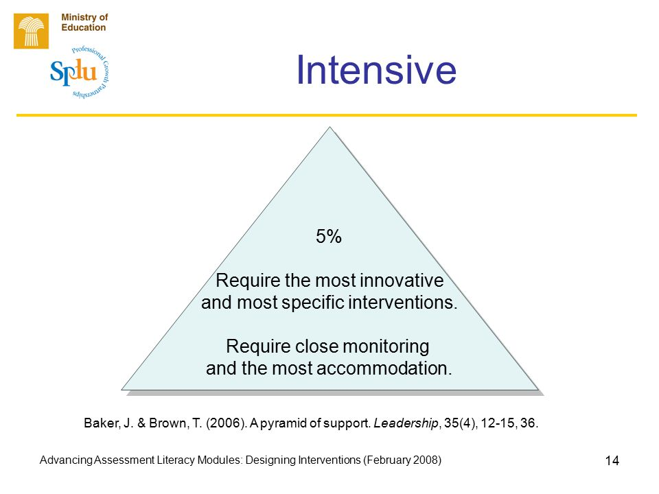 Advancing Assessment Literacy Modules: Designing Interventions (February 2008) 14 Intensive 5% Require the most innovative and most specific interventions.