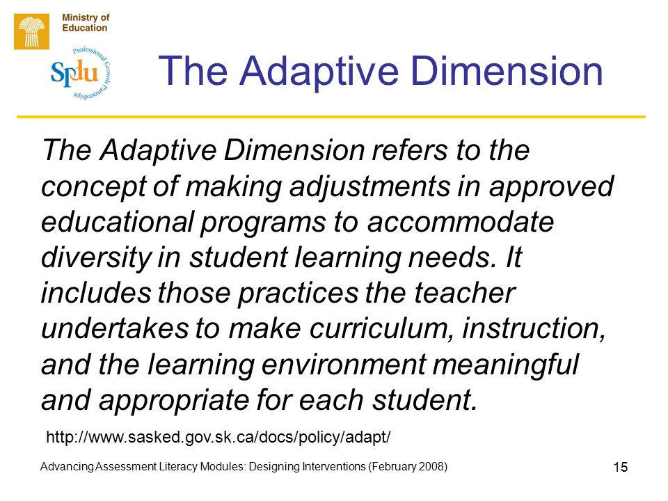 Advancing Assessment Literacy Modules: Designing Interventions (February 2008) 15 The Adaptive Dimension The Adaptive Dimension refers to the concept