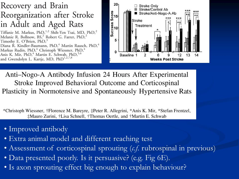 Improved antibody Extra animal model and different reaching test Assessment of corticospinal sprouting (c.f. rubrospinal in previous) Data presented p