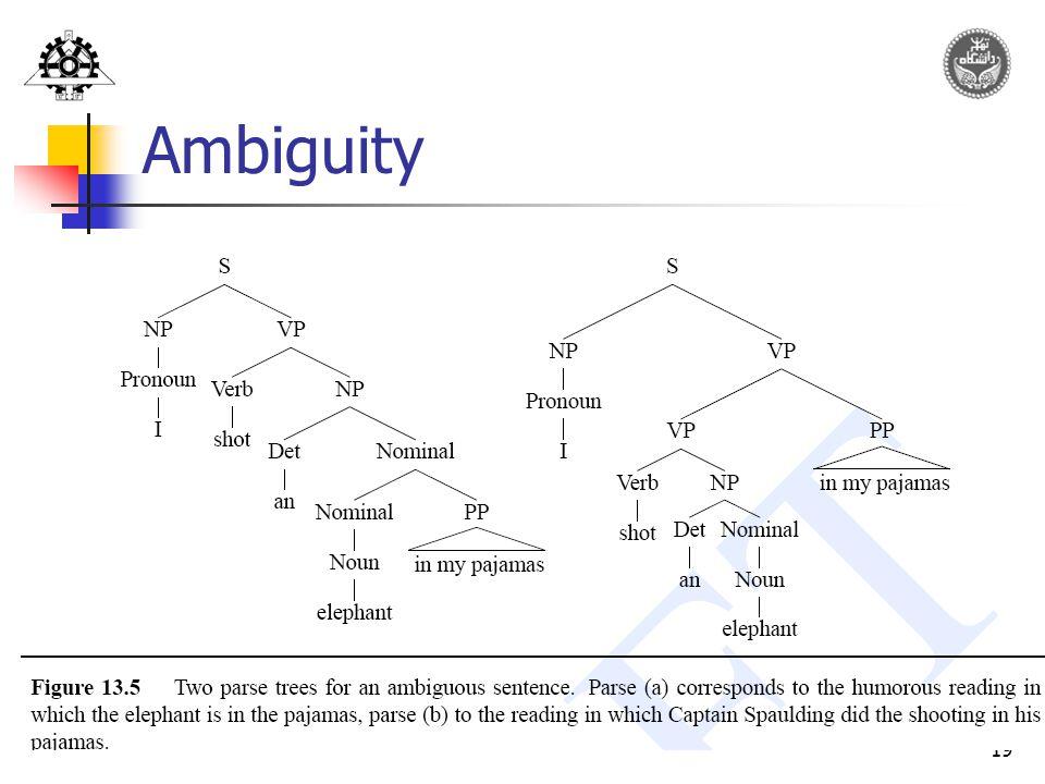 19 Ambiguity