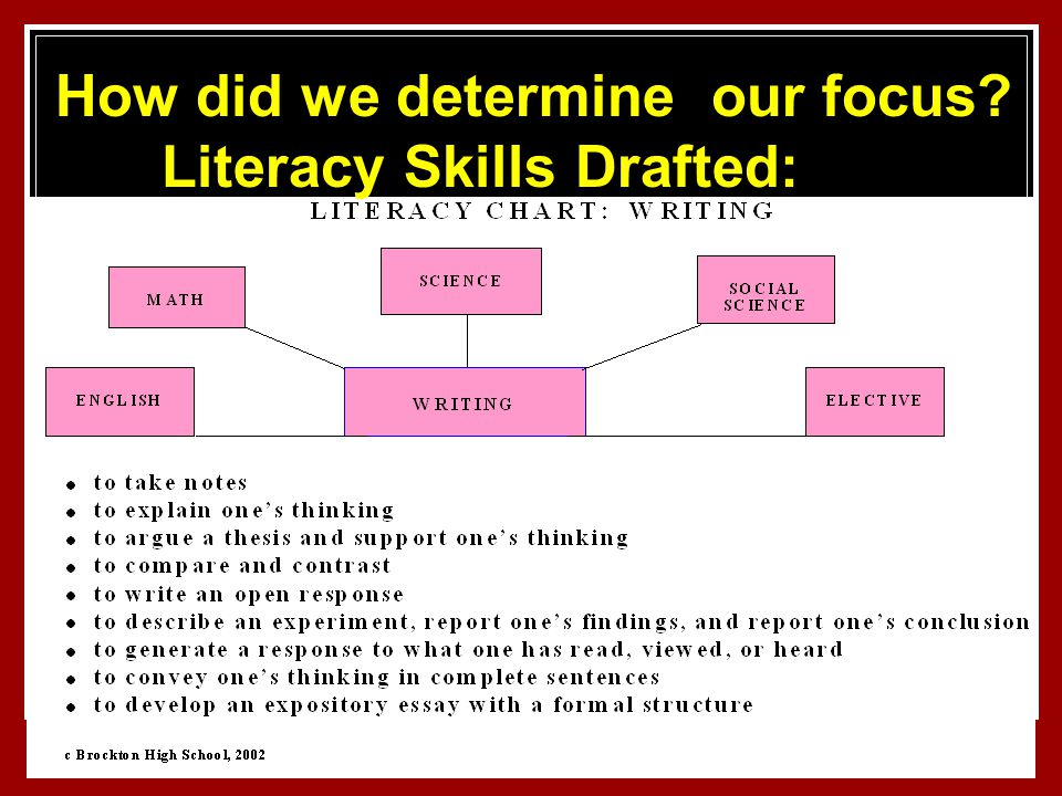 53 How did we determine our focus Literacy Skills Drafted: