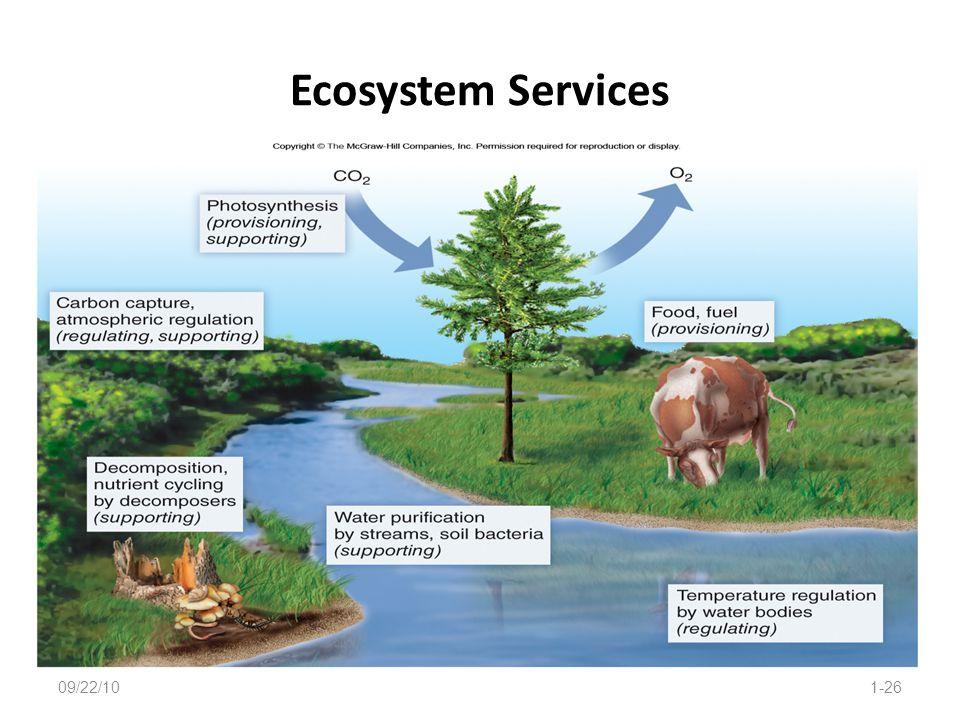 Ecosystem Services 09/22/10 1-26