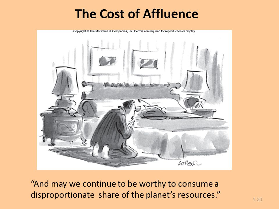 """The Cost of Affluence """"And may we continue to be worthy to consume a disproportionate share of the planet's resources."""" 1-30"""