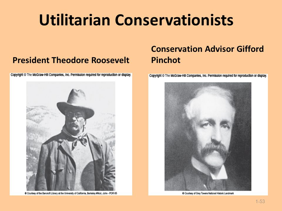 Utilitarian Conservationists President Theodore Roosevelt Conservation Advisor Gifford Pinchot 1-53