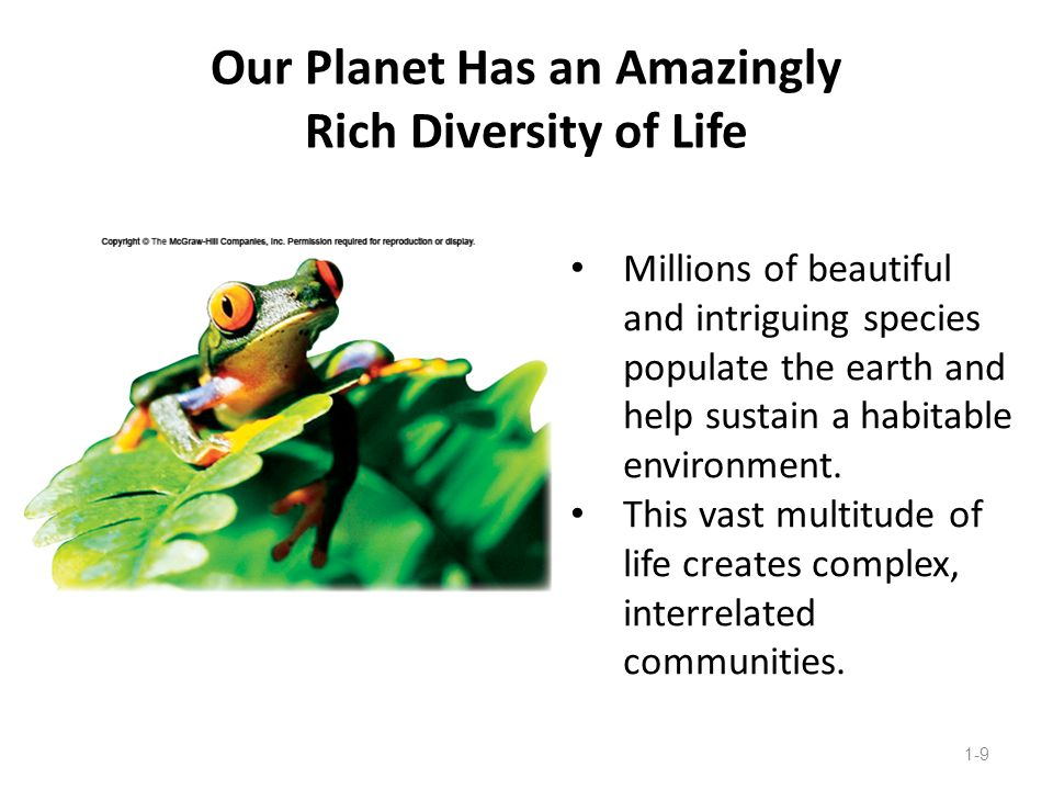 Our Planet Has an Amazingly Rich Diversity of Life 1-9 Millions of beautiful and intriguing species populate the earth and help sustain a habitable en