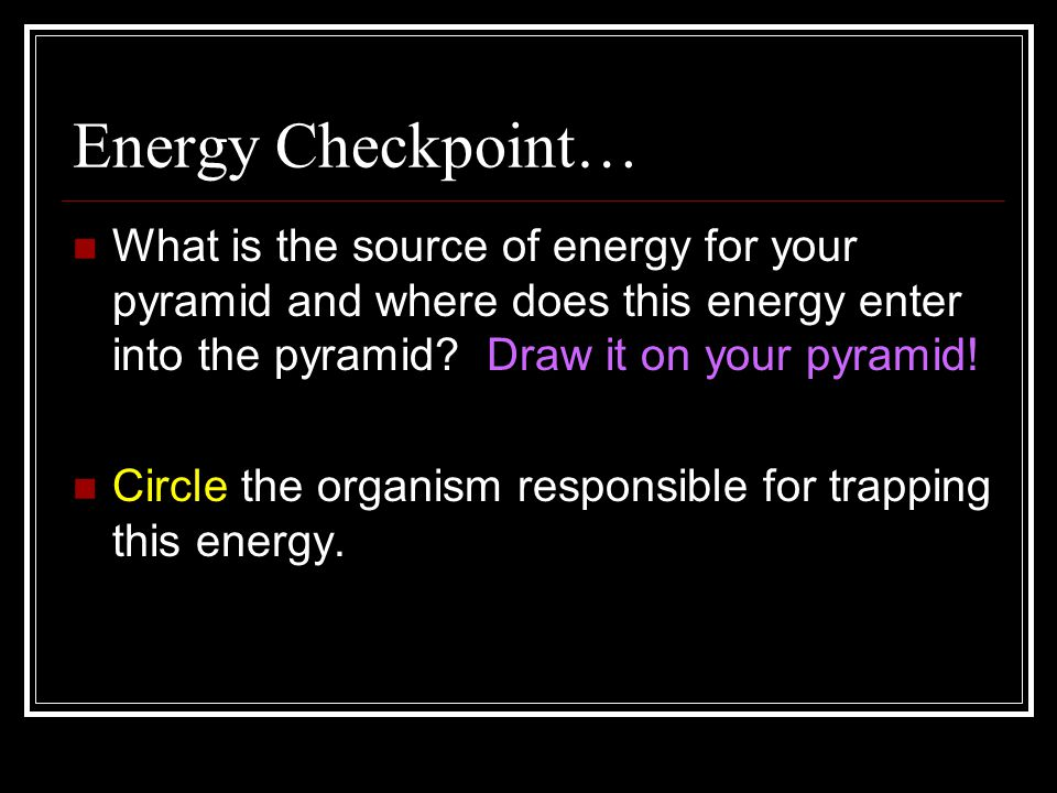 Energy Checkpoint… What is the source of energy for your pyramid and where does this energy enter into the pyramid.