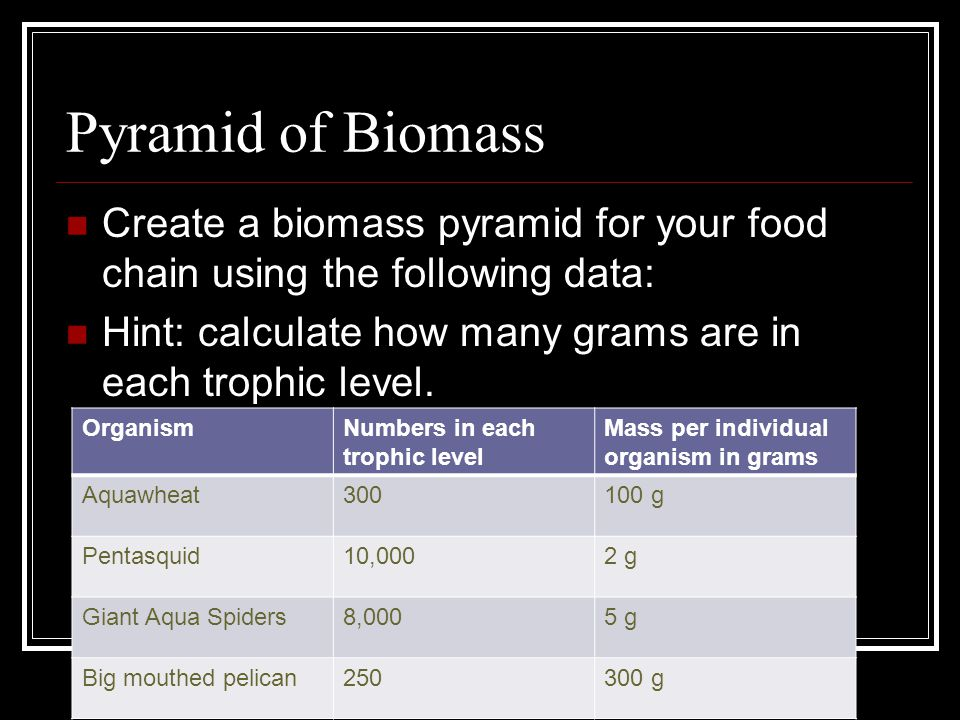 Pyramid of Biomass Create a biomass pyramid for your food chain using the following data: Hint: calculate how many grams are in each trophic level.