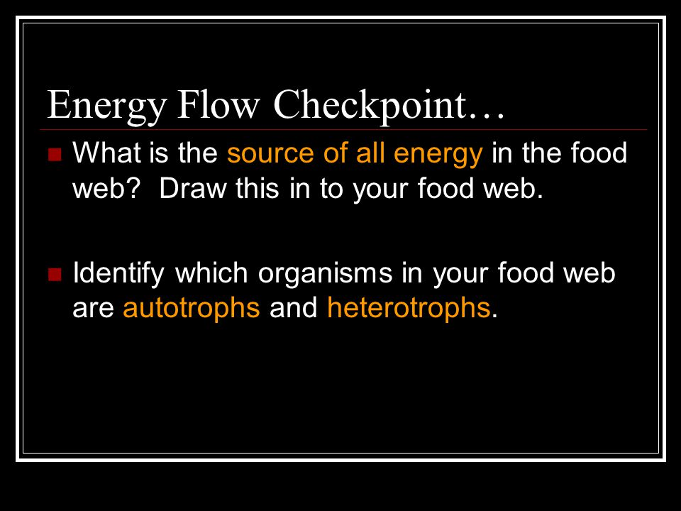 Energy Flow Checkpoint… What is the source of all energy in the food web.