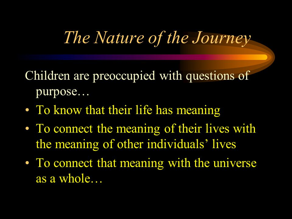 The Nature of the Journey Children are preoccupied with questions of purpose… To know that their life has meaning To connect the meaning of their lives with the meaning of other individuals' lives To connect that meaning with the universe as a whole…