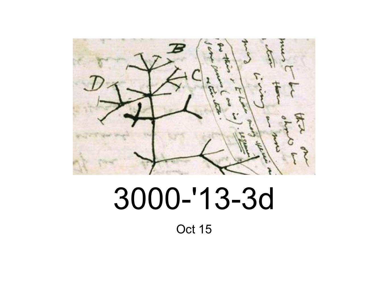 Oct 15 3000- 13-3d