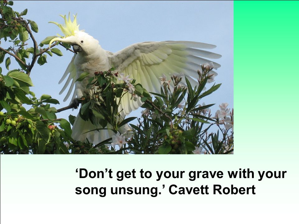 'Don't get to your grave with your song unsung.' Cavett Robert