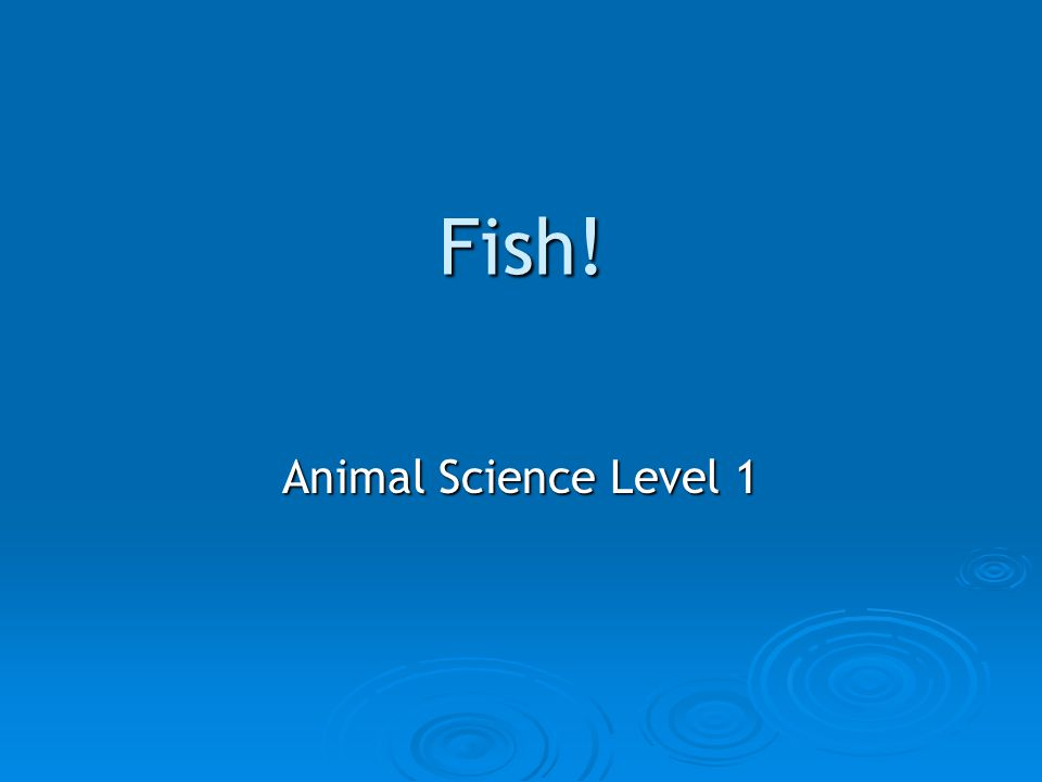 Fish! Animal Science Level 1