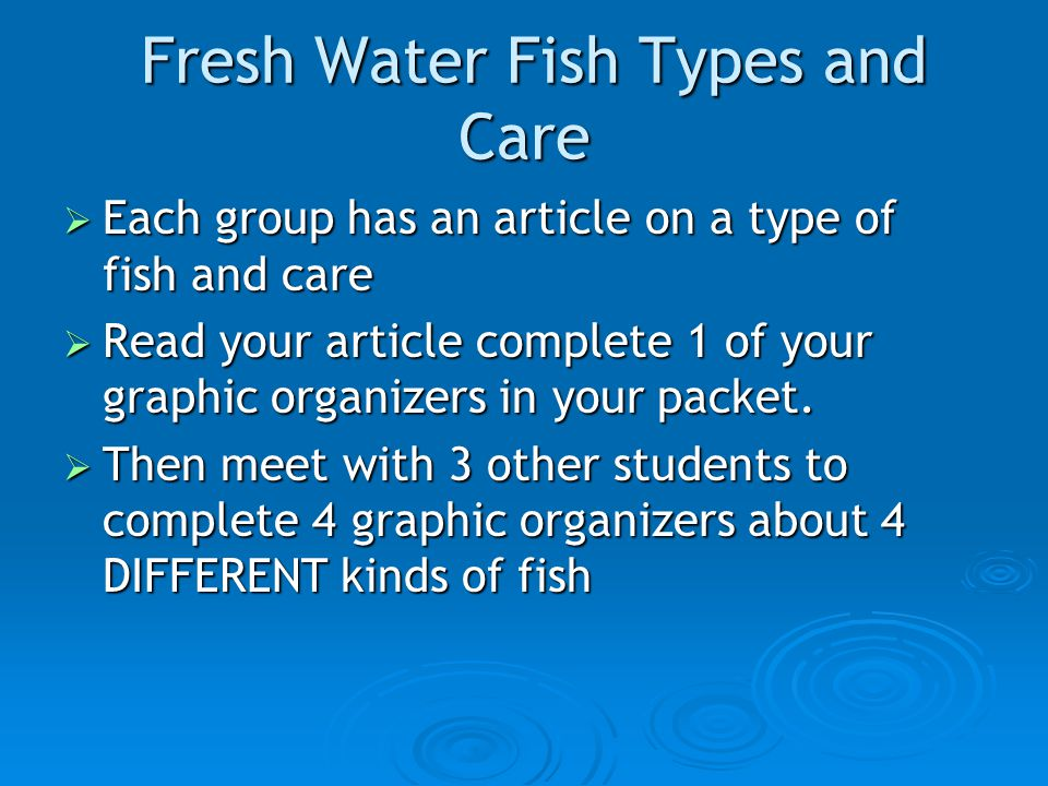 Fresh Water Fish Types and Care Fresh Water Fish Types and Care  Each group has an article on a type of fish and care  Read your article complete 1 of your graphic organizers in your packet.